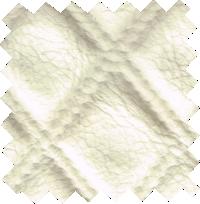 tetra013