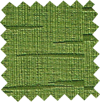trx2729 kiwi